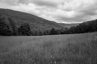 Looking toward Mt. Greylock from Haley Farms | by Richard-