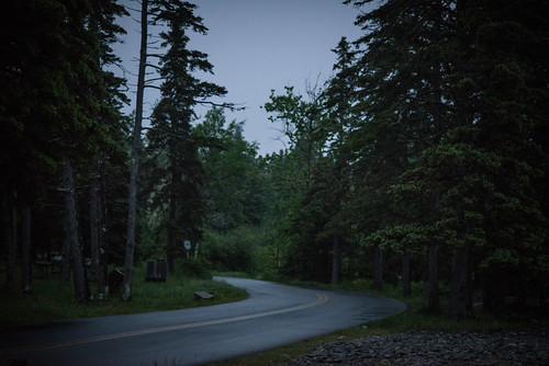 Road to Campsite at Dusk | by goingslowly