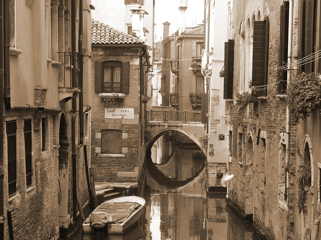 A favourite view of Venice with bird