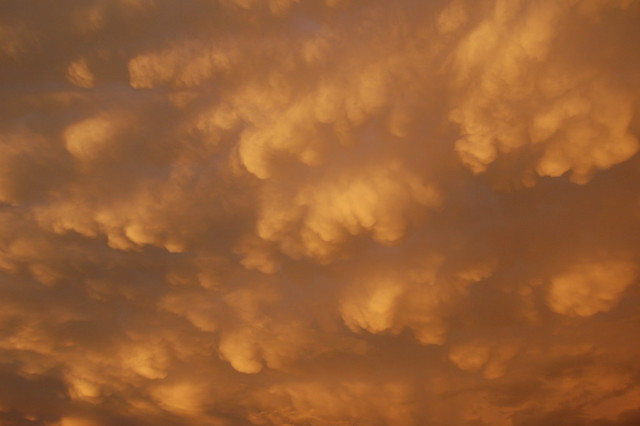 August 25, 2008 - Early Morning Thunderboomer!