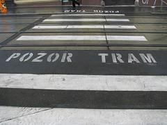 Pozor Tram