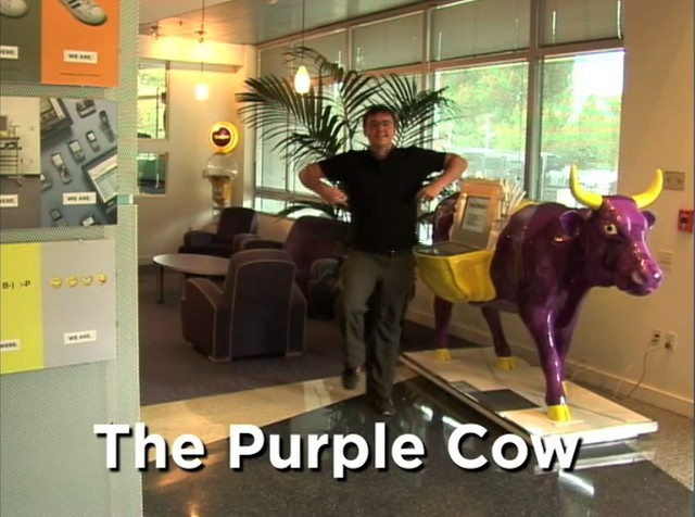 Obligatory purple cow dance | What the video of Matt Harding