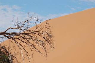Sossusvlei, Namibia | by Sara&Joachim