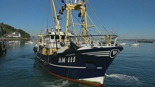 Catarina (BM-111) pulling alongside in Brixham Harbour