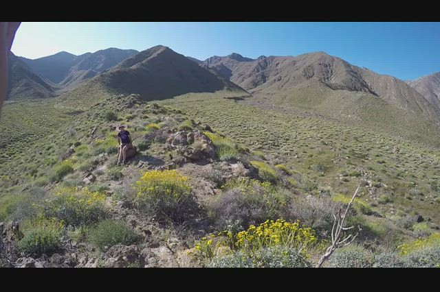 346 GoPro panorama video of the super bloom from a small ridge in Indian Canyon