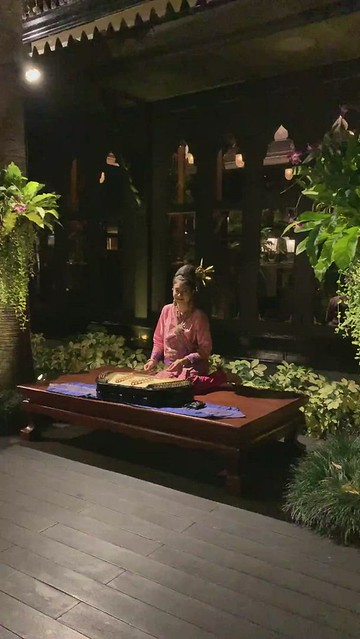 Lovely woman playing the khim instrument