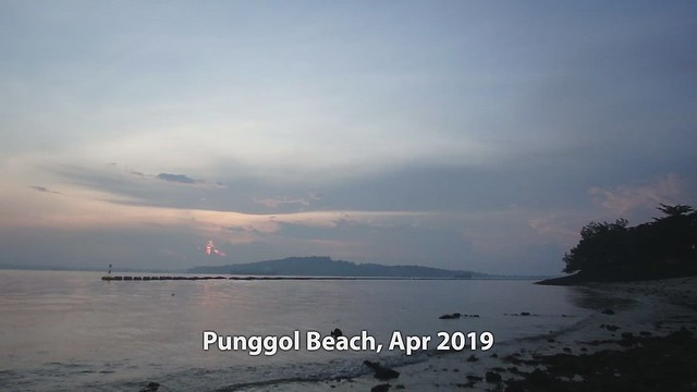 Living rocky shore at Punggol