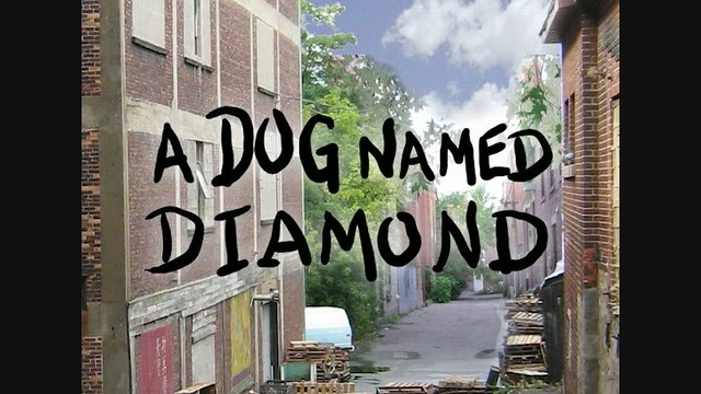 Summer Science Special: A Dog Named Diamond