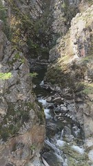 Top part of Fintry waterfall
