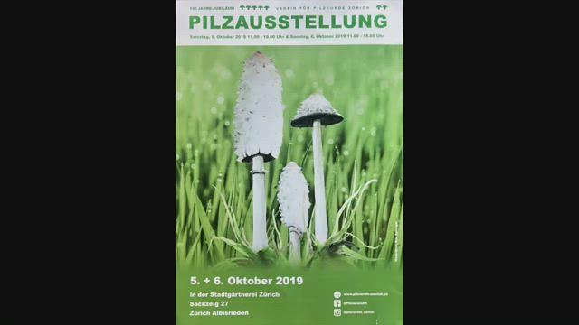100 Jahre Verein für Pilzkunde Zürich, Album 1