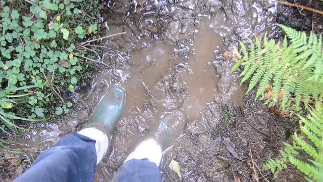 332 -- Wornout Hevea Dun282 -- Wornout Hevea Dunlop in Mud -- Bottes Hevea Dunlop dans la Boue -- Gummistiefel im Schlammlop in Mud -- Bottes Hevea Dunlop dans la Boue -- Gummistiefel im Schlamm