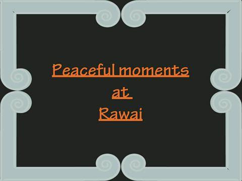 Peaceful moments at Rawai