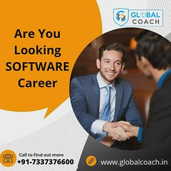 Are You Looking SOFTWARE Career