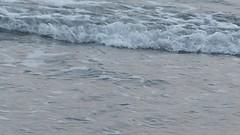 Seashore at Tainan