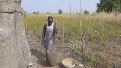 Kambari woman working pestle and mortar