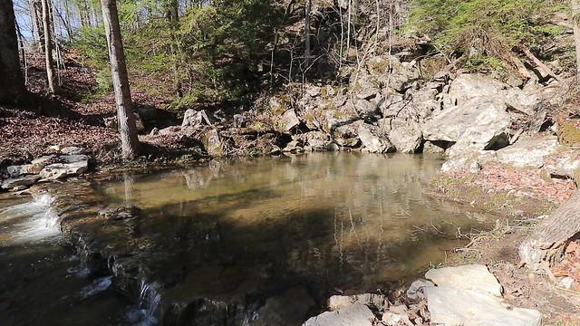 Spring above Sullivan Falls, Van Buren County, Tennessee 1