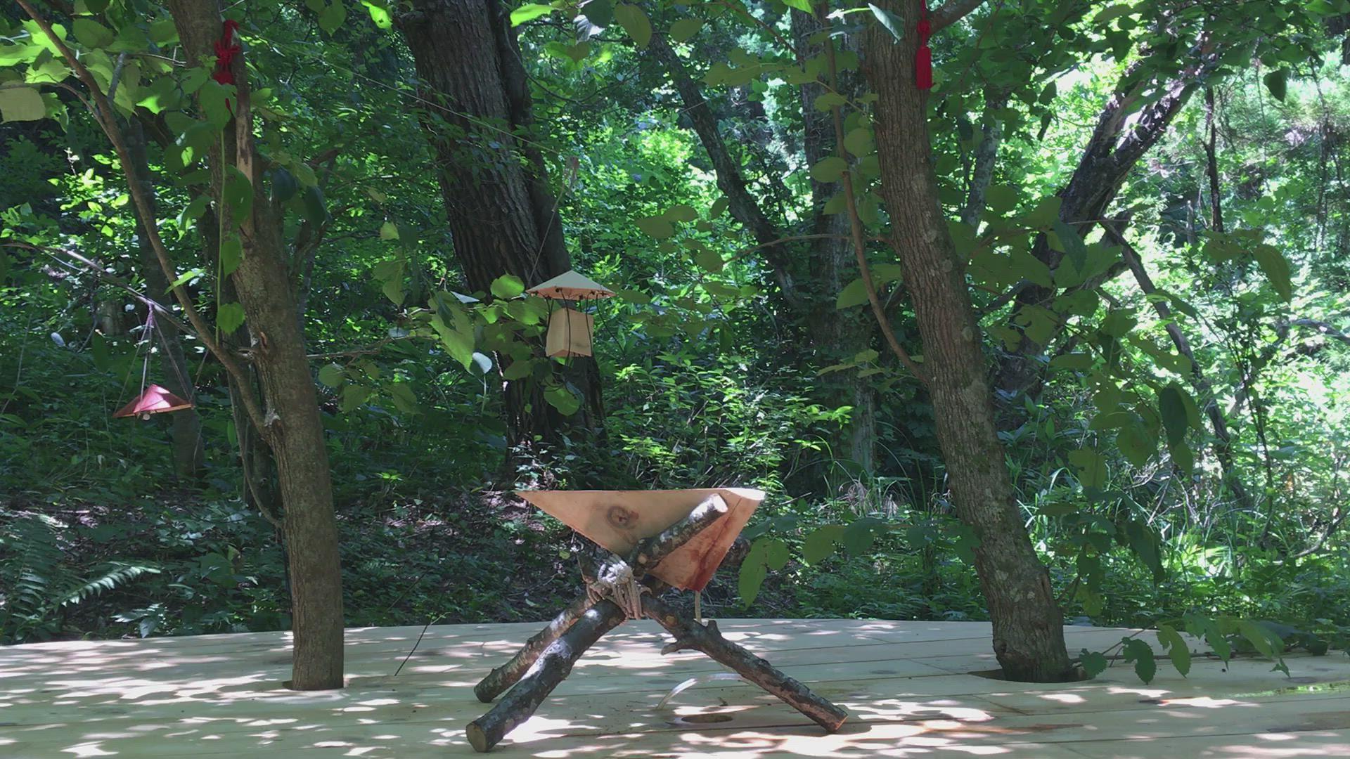 自然の監視、自然の生成 Natural Observation, Formation of nature