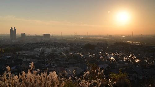 japan kyoto 京都府 八幡市 淀川 夕景 sunset 川 river