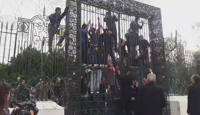 بالفيديو|| محاولة انتحار جماعية لشبانٍ تونسيين أمام البرلمان
