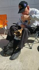 My Vietnam combat vet Marine buddy's in love with my little girl's #Corgi. Great!