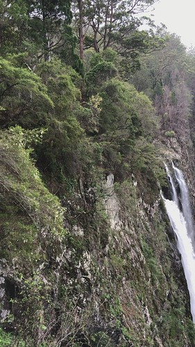 elands bulgaplateau nsw australia midnorthcoast manningvalley video ellenboroughfalls ellenboroughriver