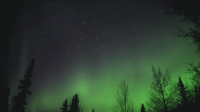 Dynamic Night Sky