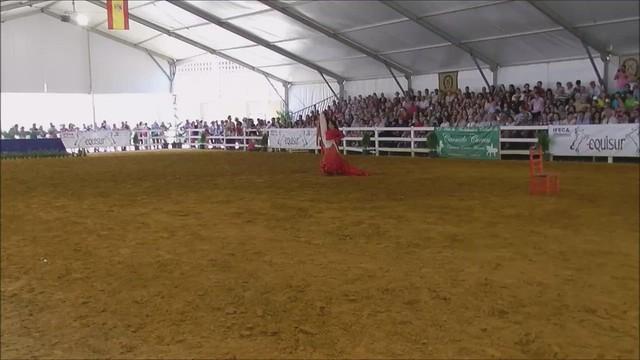 bailaora y caballo  espectaculo escuela Carmelo Cuevas Parque González Hontoria Feria del Caballo 2014 Jerez de la Frontera Cádiz video 02