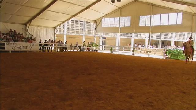 bailaora y caballo  espectaculo escuela Carmelo Cuevas Parque González Hontoria Feria del Caballo 2014 Jerez de la Frontera Cádiz video 01