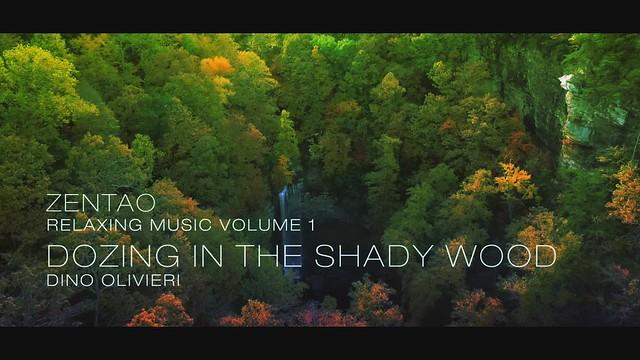Zentao Relaxing Music Volume 1 - Dozing in the Shady Wood - Dino Olivieri