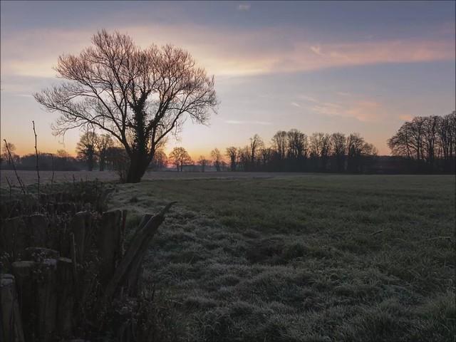 Sonnenaufgang im Münsterland (Timelapse)