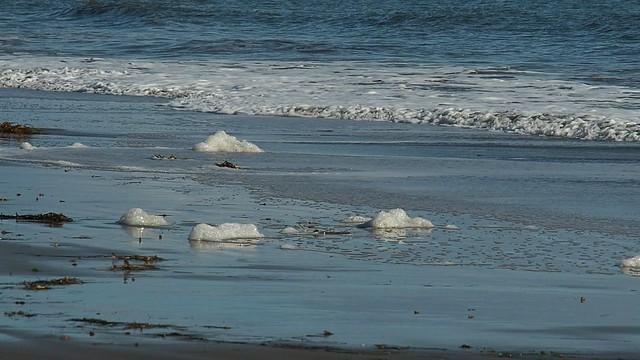 T3078410 sea foam
