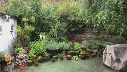 spring rain in malibu