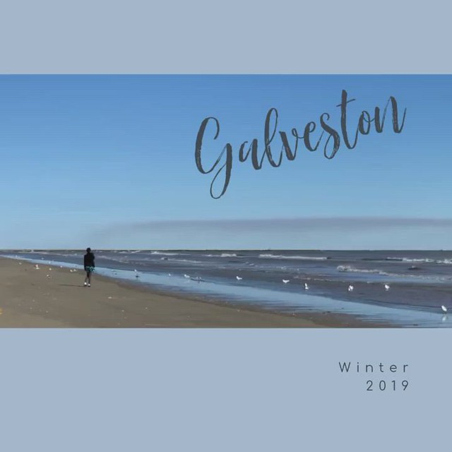 Galveston - Winter 2019