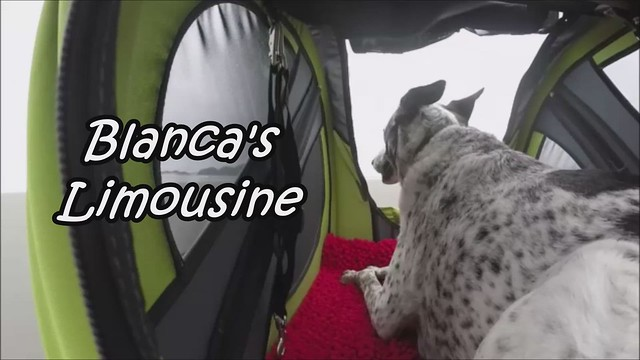 Blanca's Limousine