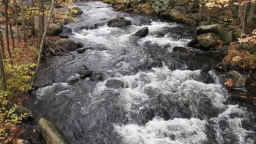 video rushingwater holland massachusetts janelazarz stream fall autumn october brook p900 nikon walkingnewengland