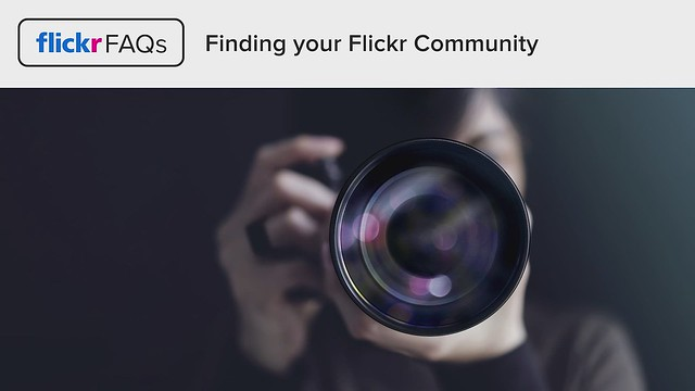 Flickr FAQs: Finding Your Flickr Community