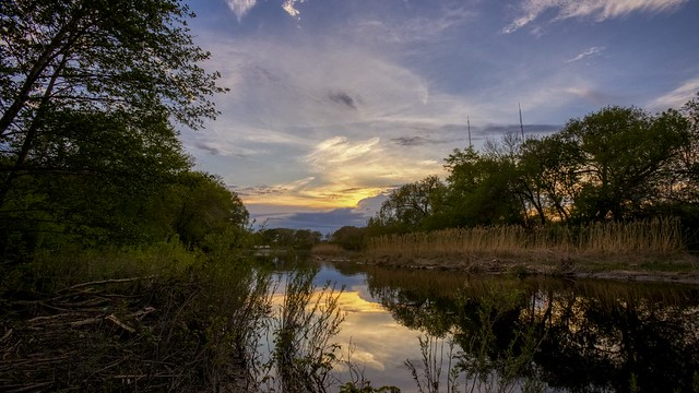 Sunset at Lincoln Park - DGN_Files_h264-420_1080p_29.97_HQ