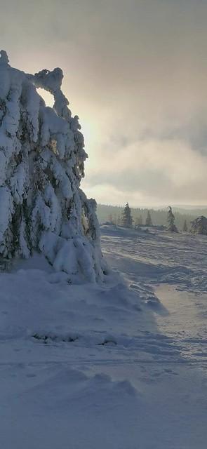 Paysage et lumière magnifiques sur les Hautes Chaumes