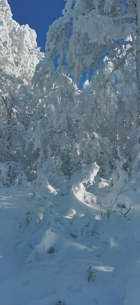 Tout est blanc ! Et le contraste avec le grand ciel bleu est magnifique !