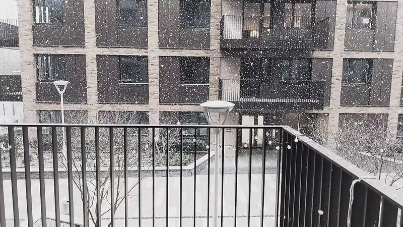 Snowmo