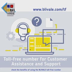 blivale_en_toolfree_numeroverde_for_technical_support_1080x1080