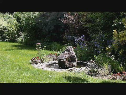 Brunnen plätschern Amsel