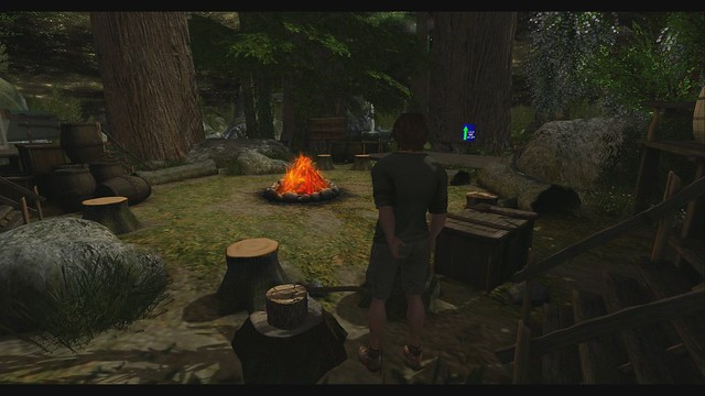 The Redwood Grove Campfire Promo Video