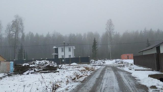 Зима 2020-2021, декабрь январь, Север, за городом, природа, деревья ,