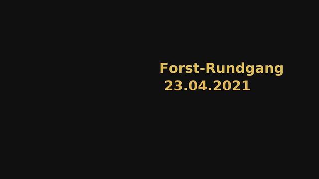 2021.04.23_1927_UK_Rundgang_Niederholte_001