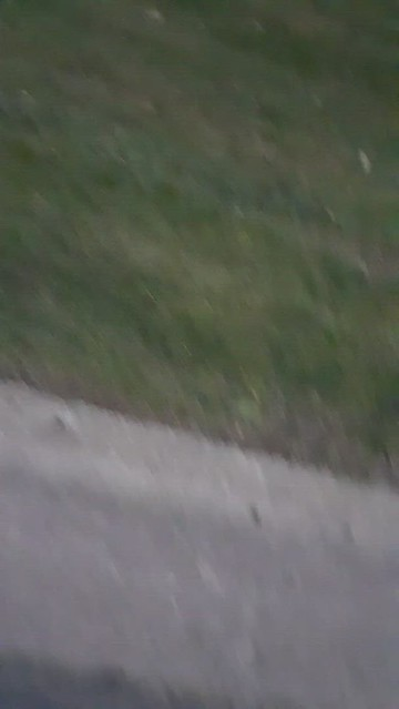 Woodcliff Drive, Kalamazoo