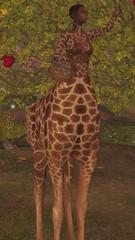 New release at We Love Roleplay - Giraffataur!