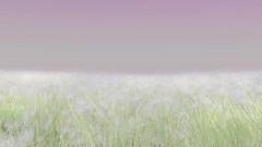 Stardust - Sparkly Grass video