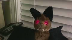 Plush Creations Bat from 1988
