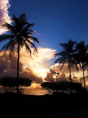 sea vacation sky clouds sunrise puertorico sanjuan palmtrees soe blueribbonwinner otw mywinners perfectsunsetssunrisesandskys goldstaraward jediphotographer